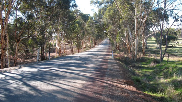 Toodyay - Country Road